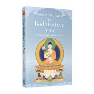 Bodhisattva Vow 3d Paperback Front