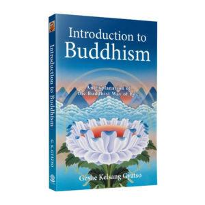 Introduction To Buddhism 3d Paperback Front
