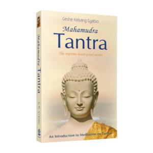 Mahamudra Tantra 3d Paperback Front