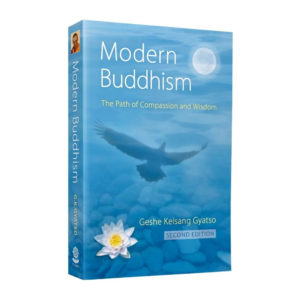 Modern Buddhism 3d Paperback Front