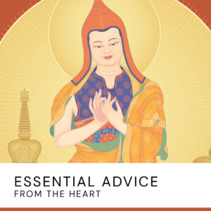 20200723 Essential Advice From The Heart2